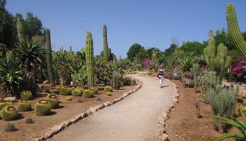 Botanicactus Botanical Gardens, Ses Salines