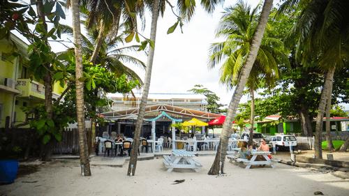 Carrib-Barbados