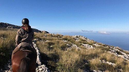 Hipica Formentor Horse Riding, Sa Pobla