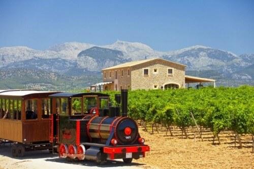 Mallorca Wine Tours, Binissalem